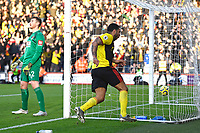 Troy Deeney of Watford scores the second goal and celebrates as AFC Bournemouth keeper Mark Travers of Bournemouth looks to the sky during AFC Bournemouth vs Watford, Premier League Football at the Vitality Stadium on 12th January 2020