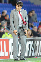 Cardiff City Stadium, Friday 11th Oct 2013. Wales manager Chris Coleman suffers the pressures during the Wales v Macedonia FIFA World Cup 2014 Qualifier match at Cardiff City Stadium, Cardiff, Friday 11th Oct 2014. All images are the copyright of Jeff Thomas Photography-07837 386244-www.jaypics.photoshelter.com