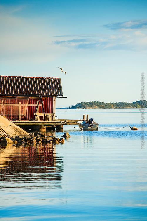 Båthus, båt och brygga med en flygande mås vid Askfatshamnen på Dalarö i Stockholms skärgård. / Boathouse, boat and pier with a flying seagull at Askfatshamnen on Dalarö in the Stockholm archipelago Sweden.
