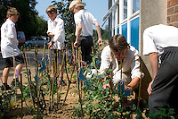 Primary: Garden