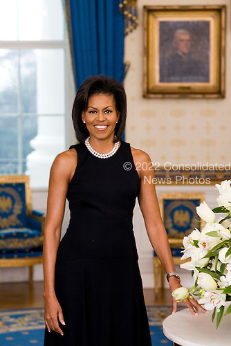 Washington, DC - February 27, 2009 -- Official Portrait of First Lady Michelle Obama, February 2009, in the Blue Room of the White House. .Credit: Joyce N. Boghosian - White House via CNP