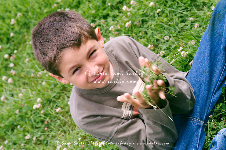Young boy picking handfuls of grass, France.