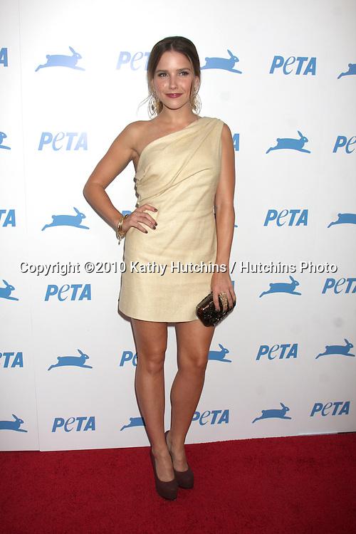 LOS ANGELES - SEP 25:  Sophia Bush arrives at the PETA 30th Anniversary Gala at Hollywood Palladium on September 25, 2010 in Los Angeles, CA