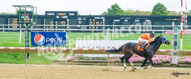 Va Banque winning at Delaware Park on 10/14/15