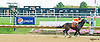 Va Banque winning at Delaware Park on 10/14/15