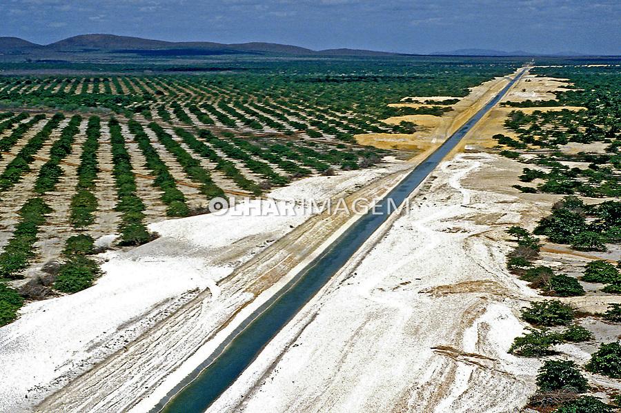 Canal de irrigação do Rio Jaguaribe. Ceará. 1993. Foto Juca Martins.