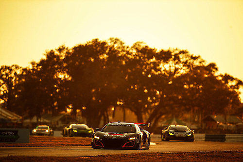 2017 IMSA WeatherTech SportsCar Championship<br /> Mobil 1 Twelve Hours of Sebring<br /> Sebring International Raceway, Sebring, FL USA<br /> Saturday 18 March 2017<br /> 86, Acura, Acura NSX, GTD, Oswaldo Negri Jr., Tom Dyer, Jeff Segal<br /> World Copyright: Michael L. Levitt/LAT Images<br /> ref: Digital Image levitt_seb_0317-28014