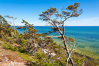 Sweden, Gotska Sandön national park. Around Tärnudden.