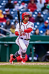 15 April 2018: Washington Nationals infielder Wilmer Difo at bat in the 9th inning against the Colorado Rockies at Nationals Park in Washington, DC. All MLB players wore Number 42 to commemorate the life of Jackie Robinson and to celebrate Black Heritage Day in pro baseball. The Rockies edged out the Nationals 6-5 to take the final game of their 4-game series. Mandatory Credit: Ed Wolfstein Photo *** RAW (NEF) Image File Available ***