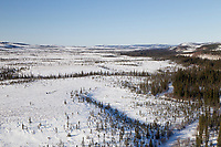 A team on the trail between Ophir and Iditarod during the 2011 Iditarod race.
