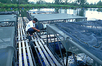 Aquaculture technicien inspecting Aquaculture cages