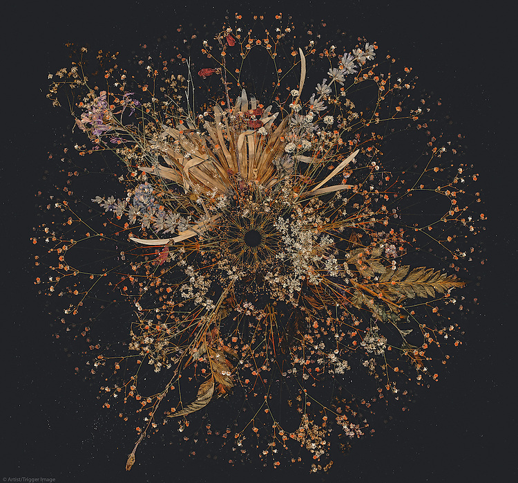 Colour image of floral design