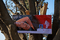 Condom advertising in a tree along the road from Varanasi India to Lumbini Nepal road scene in the rural area.