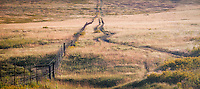 A dirt road meets a fence line at the National Bison Range, Montana.