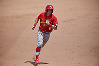 Palm Beach Cardinals designated hitter Conner Capel (8) runs the bases during a game against the Jupiter Hammerheads on August 5, 2018 at Roger Dean Chevrolet Stadium in Jupiter, Florida.  Jupiter defeated Palm Beach 3-0.  (Mike Janes/Four Seam Images)