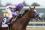 Plum Pretty, ridden by Rafael Bejarano, wins the 42nd running of the grade II Cotillion Stakes, one mile and a sixteenth for three-year-old fillies, at  Parx Racing in Bensalem, PA, October 1, 2011. Trainer is Bob Baffert, owner is Peachtree Stable (Joan Fairman Kanes/Eclipse Sportswire)