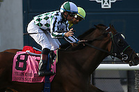 DEL MAR, CA  JULY 16: #8 She's Not Here ridden by jockey Drayden Van Dyke after beating #1 Fresh Feline and Victor Espinoza,  to win the Yellow Ribbon Handicap (GII) at Del Mar Turf Club in Del Mar, CA on July 16, 2016(Photo by Casey Phillips/Eclipse Sportswire/Getty ImagesDEL MAR, CA  JULY 16: (Photo by Casey Phillips/Eclipse Sportswire/Getty Images