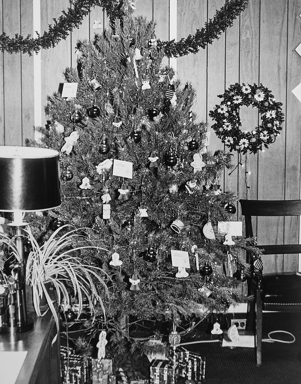 Decorated office of Rep. Robert W. Edgar, D-Pa., with Christmas tree during Christmas contest in 1983. (Photo by CQ Roll Call via Getty Images)