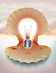 Illustrative image of light bulb in shell representing ideas