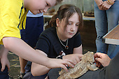 A girl strokes a Bearded Dragon lizard at Church Street Summer Festival 2005, Paddington, London.