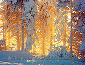 Marek, CHRISTMAS LANDSCAPES, WEIHNACHTEN WINTERLANDSCHAFTEN, NAVIDAD PAISAJES DE INVIERNO, photos+++++,PLMPB0101,#xl#