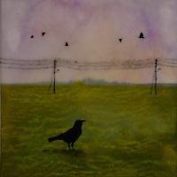 Crow encaustic painting with photography