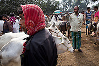 Indo-Bangladesh Porous Borders, Migration