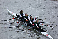 Crew: 246   Wimbledon High School Boat Club   W J16 4x-<br /> <br /> Schools' Head of the River 2018<br /> <br /> To purchase this photo, or to see pricing information for Prints and Downloads, click the blue 'Add to Cart' button at the top-right of the page.