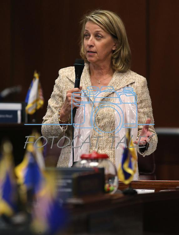 Nevada Sen. Barbara Cegavske, R-Las Vegas, speaks on the Senate floor at the Legislative Building in Carson City, Nev., on Tuesday, May 21, 2013. .Photo by Cathleen Allison