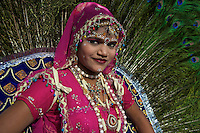 Elepahnt Festival Jaipur India