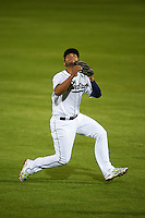 Peoria Javelinas second baseman Fernando Perez (45) makes a sliding catch during an Arizona Fall League game against the Scottsdale Scorpions on October 24, 2015 at Peoria Stadium in Peoria, Arizona.  Peoria defeated Scottsdale 3-1.  (Mike Janes/Four Seam Images)