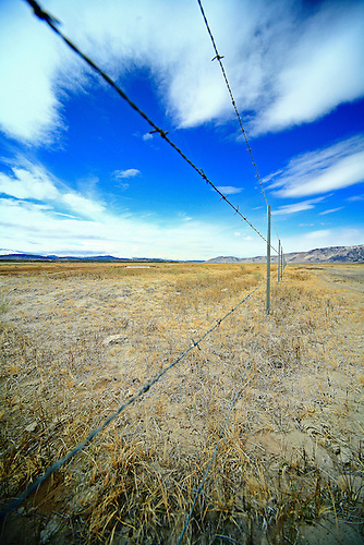 A Barb-Wired fence in the Owens Valley of California