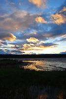 Wildlife at sunset in Ephraim Harboar, Door County, Wisconsin
