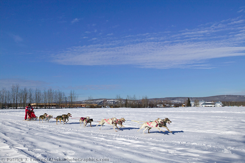 Musher Michi Konno passes Creamers Field on day three of the oldest continuously run sled dog race in the world, the 2003 Open North American Sled dog championships, Fairbanks, Alaska. The annual race consists of three daily races, the combined fastest time wins.