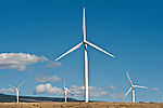 Wind machines, turbine farm in Eastern Washington