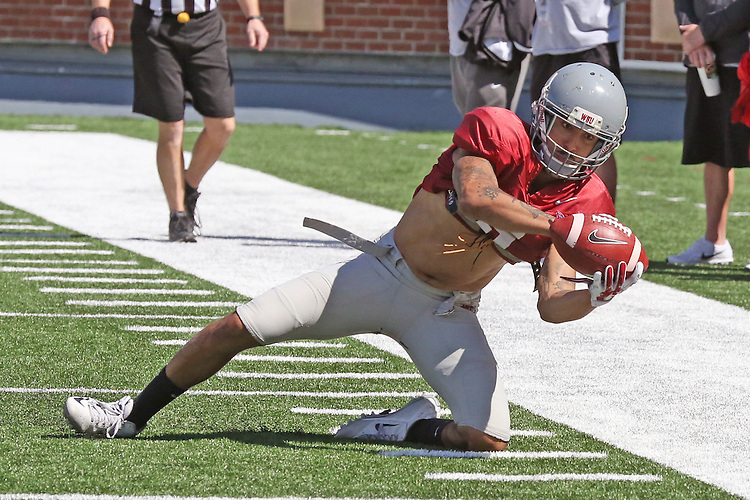 Gabe Marks hauls in a Luke Falk pass during the last spring scrimmage at Martin Stadium in Pullman, Washington, on April 16, 2016.
