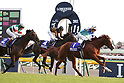 Horse Racing : 37th Japan Cup at Tokyo Race Course
