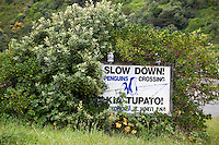 """Wellington, New Zealand.  """"Slow down for Penguins"""" Sign, Suburban Residential Area."""