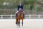 05/04/2019 - Class 8 - British Dressage - Brook Farm training centre