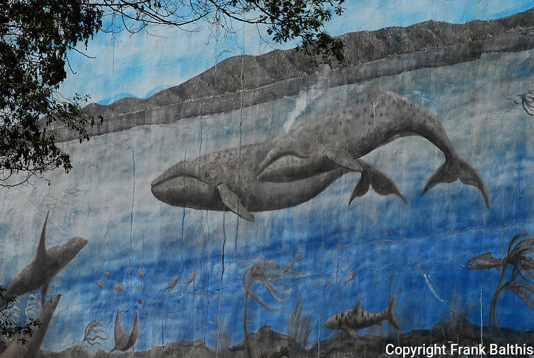 gray whales in mural on Cannery Row in Monterey