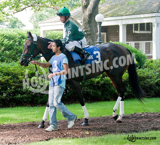 Hold Our Destiny before The Christiana Stakes at Delaware Park on 7/10/13