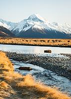 Morning light on Aoraki Mount Cook from Tasman River flats, Aoraki Mount Cook National Park, UNESCO World Heritage Area, Mackenzie Country, New Zealand, NZ