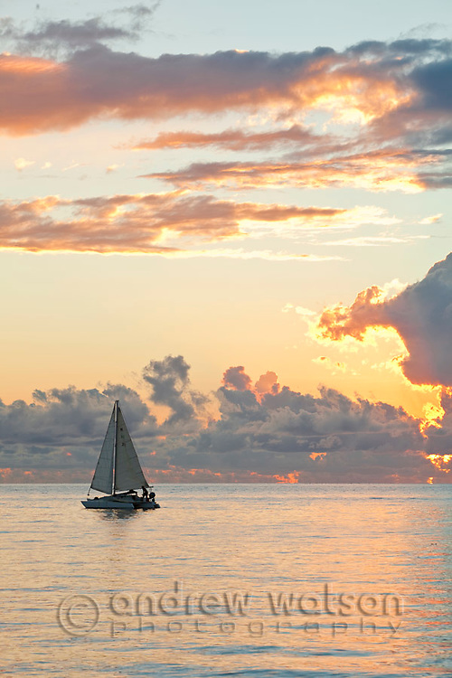 Yacht on the Coral Sea at dawn.  Palm Cove, Cairns, Queensland, AUSTRALIA