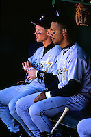 SAN FRANCISCO, CA - Portrait of Moises Alou and Craig Biggio of the Houston Astros in the dugout during a game against the San Francisco Giants at Candlestick Park in San Francisco, California on April 7, 1998. Photo by Brad Mangin