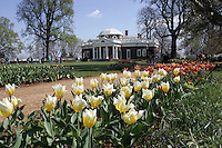 Monticello thomas jefferson flowers spring Display image Only: Monticello-the historical home of Thomas Jefferson located in Charlottesville, Va. Photo/Andrew Shurtleff