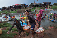 May 23, 2016 - Kampong Khleang, Cambodia. Fish are unloaded from boats to a waiting wholesaler. Climate change and strong El Niño-induced drought, deforestation and upstream hydropower and irrigation projects are all factor affecting the lake's fish stocks. © Nicolas Axelrod / Ruom