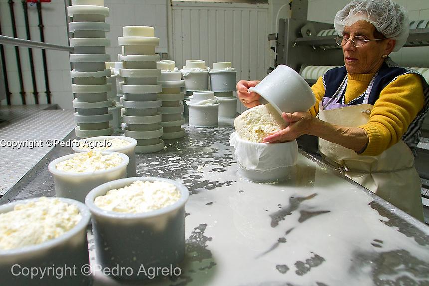 fecha:11-04-2012 (Lugo). Produccion artesanal del queso de la Ulloa, en la queseria ecologica Arqueixal, en Palas de Rei. Elaborado con leche de vaca. Este fin de semana se celebra la fiesta anual del queso, en la comarca de la Ulloa en Palas de Rei (Lugo). Foto: EFE/eliseo trigo