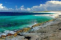 shoreline and fringing coral reef, Papahanaumokuakea Marine National Monument, Laysan, Northwestern Hawaiian Islands, Hawaii, USA, Pacific Ocean