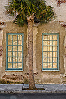 Charleston wall and windows with palm tree scene in artistic style