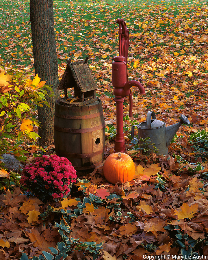 Bureau, County, IL<br /> Red well pump, wooded barrel and metal watering can in autumn setting with pumpkin, mums and fallen leaves